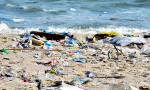 """Prime Minister: """"Fighting plastic waste is not just launching a movement or half-hearting"""""""